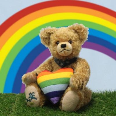 Regenbogen Bär  - für Toleranz und Weltoffenheit 33 cm Teddy Bear