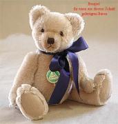 Teddybären Schnitt Sebastian  Bär mit eingenähter Schnauze und eingenähten Ohren